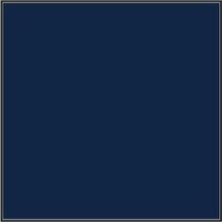 317 Pro Azul Marino